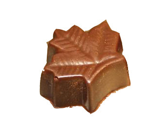 Maple Chocolate