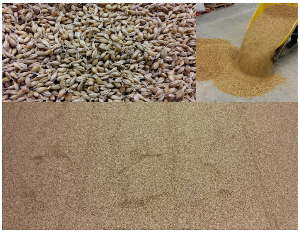 Why Organic Floor Malt?