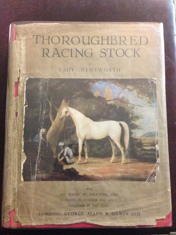 Lady Wentworth - Thoroughbred racing Stock