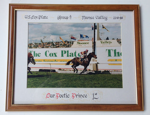 3. Framed - Cox Plate 1988 Our Poetic Prince