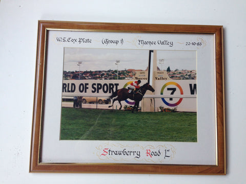 3.Framed - Cox Plate 1983 Strawberry Road