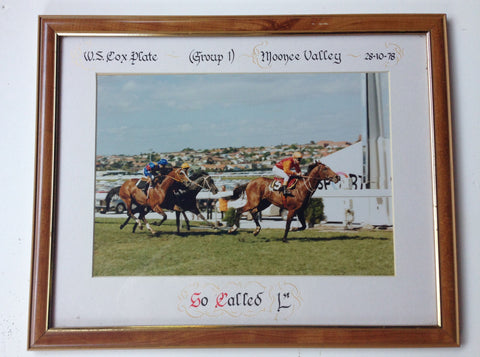 3.Framed - Cox Plate 1978 - So Called