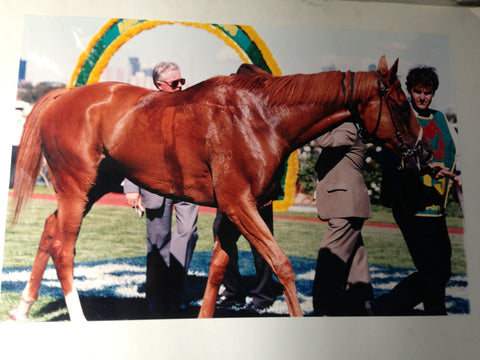 4. Poster - Saintly after 1996 Melbourne Cup