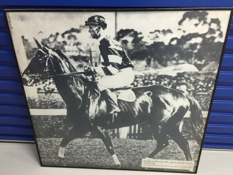 Superb massive shot of Phar Lap - rarely seen