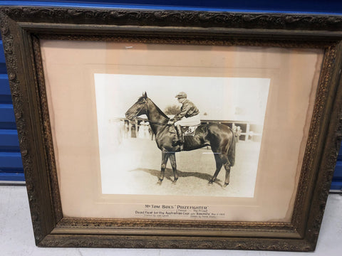 3. Framed - Photo of Prizefighter dead heated Australian Cup 1912