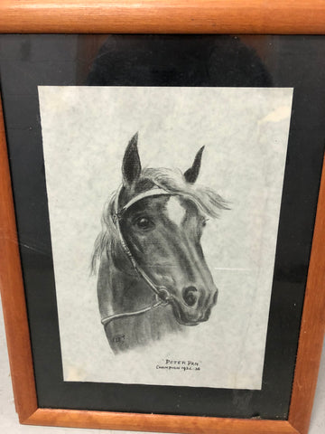 3. Framed - Famous Horses Sketch - Peter Pan