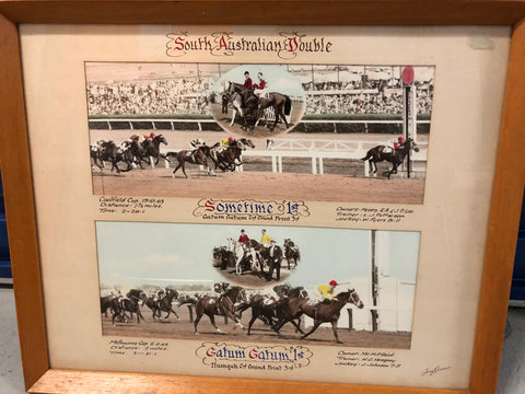 Framed shot of Sometime and Gatum Gatum Cup Double