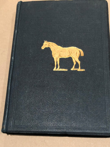 The Horse by Sidney Galvayne