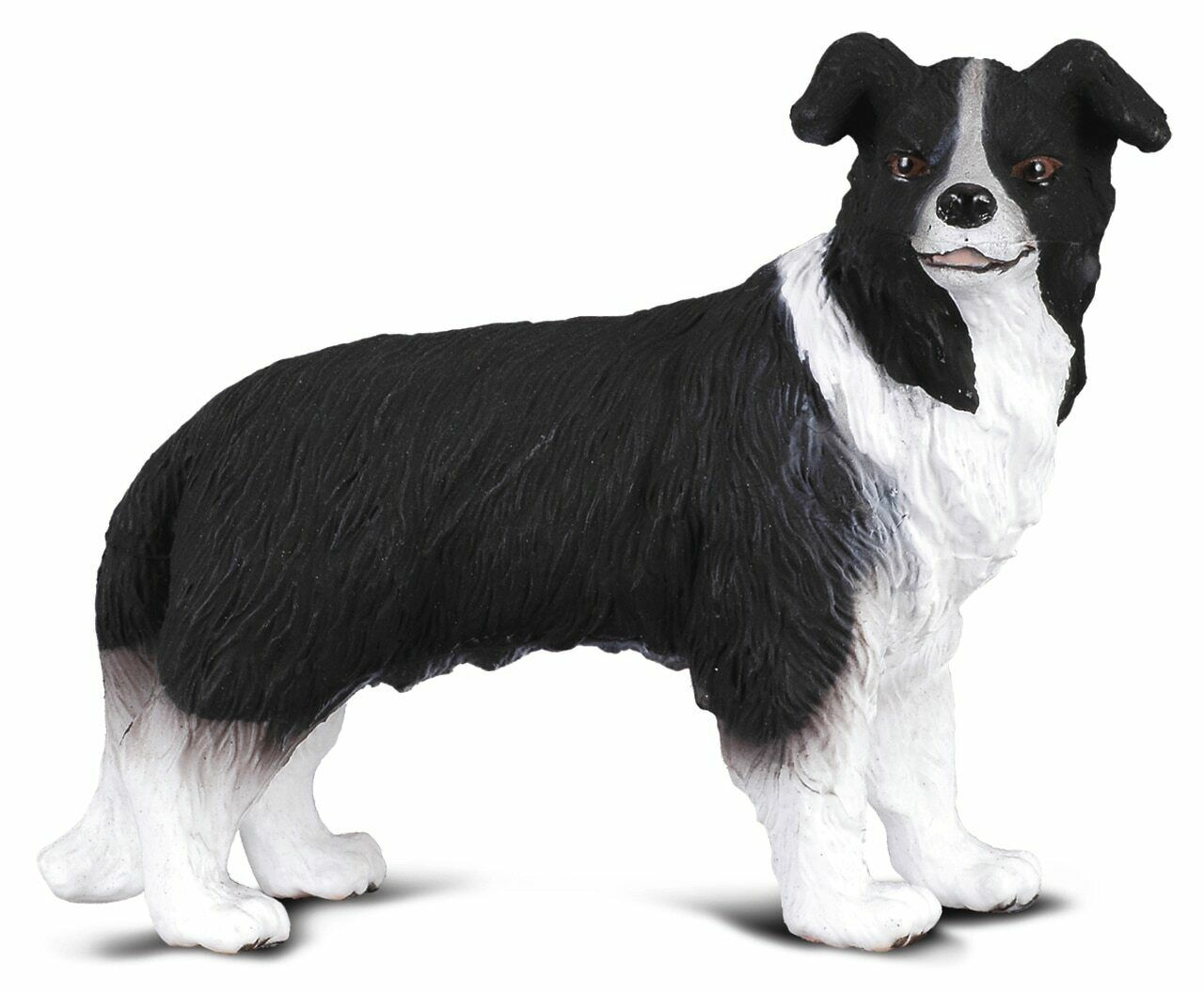 CollectA Animal Figurine - Border Collie Dog #88010
