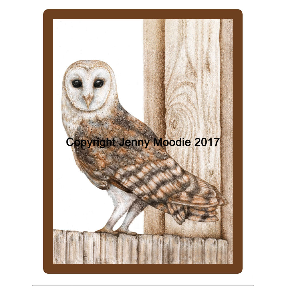 Limited Edition Framed Print - Balfour the Barn Owl
