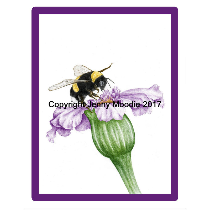 Limited Edition Framed Print - Busy Bee