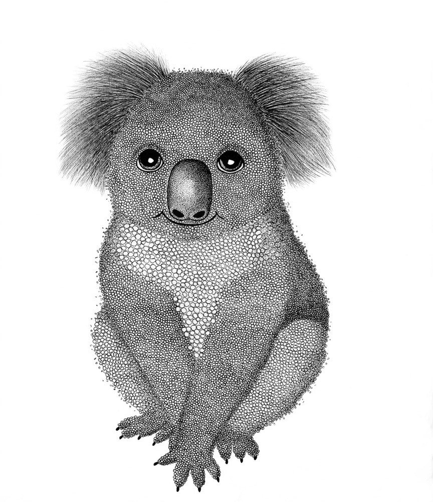 A4 Animal Illustration Prints - Koala