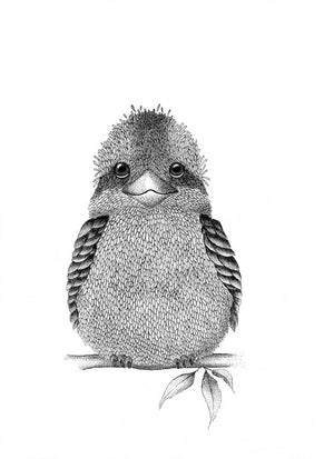 A4 Animal Illustration Prints - Kookaburra