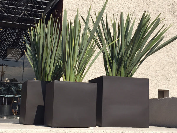 Large outdoor planters gardia planters large outdoor planters workwithnaturefo