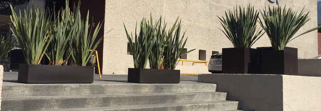 Fiberglass planters for the garden, shown here are our box and cubic models in white matte