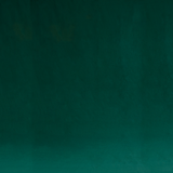 Solid Dark Green Photo Fashion Muslin Background - Backdropsource New Zealand - 1