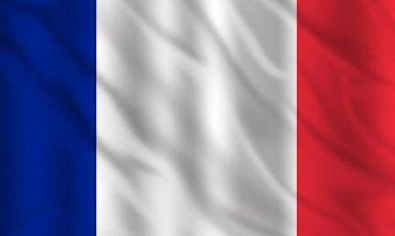 France Country Flag in TrueKolor Wrinkle Free Fabric