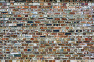 Multicolored Brick Wall Backdrop