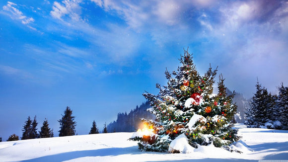 Snow Photography Christmas Print Photography Backdrop