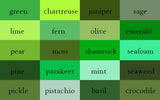 Green Shade Wrinkle-Resistant Background - Backdropsource New Zealand