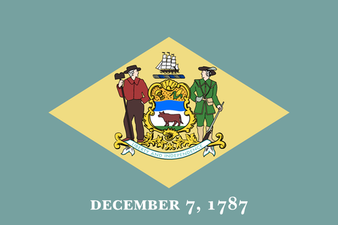 Delaware State Flag in TrueKolor Wrinkle Free Fabric