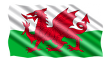 Wales Red Dragon Flag in TrueKolor Wrinkle Free Fabric