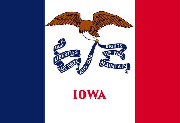 Iowa State Flag in TrueKolor Wrinkle Free Fabric