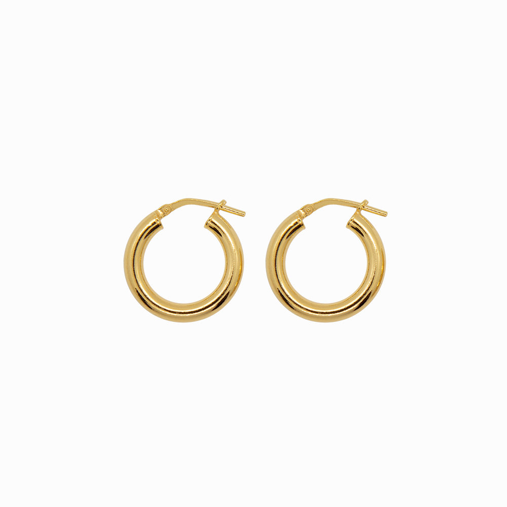 Chunky Hoops Earrings Small