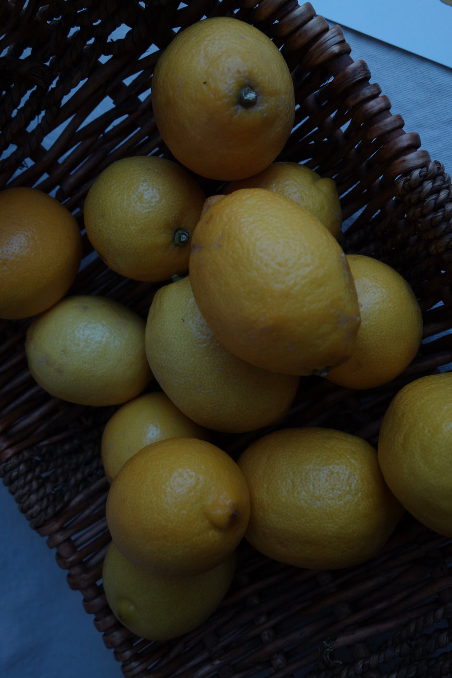 Postcard Lemon