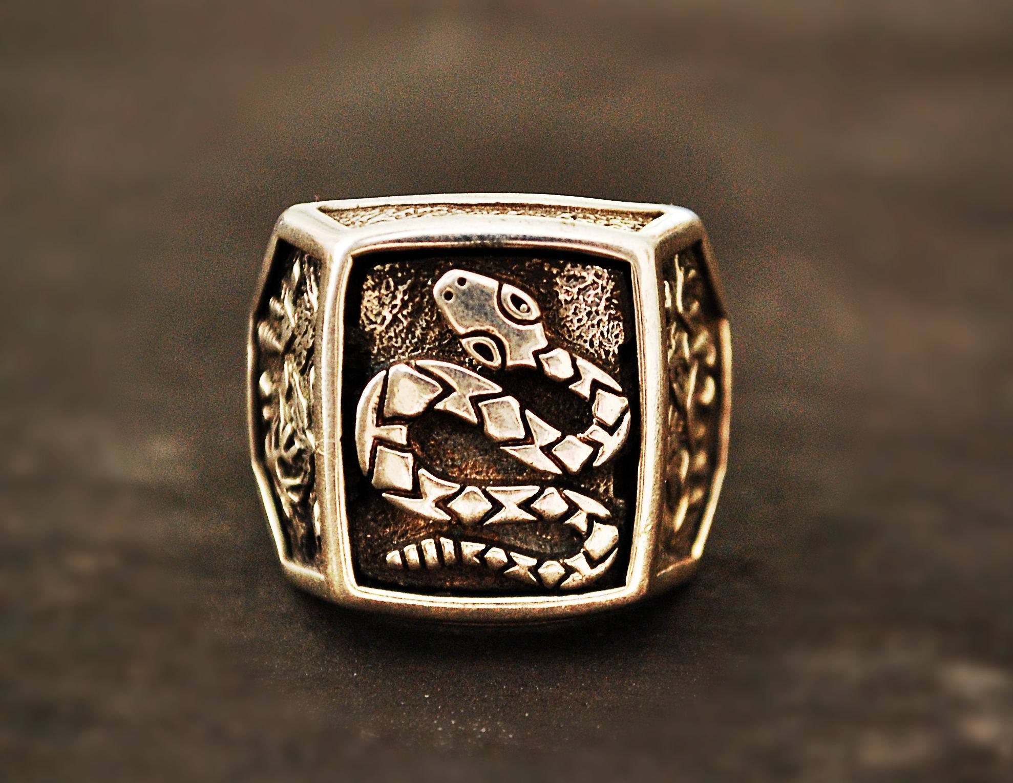 Native American Snake Ring - Size 10 1/2 - Snake Ring