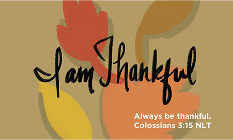 Thanksgiving, Pass Along Scripture Cards, I Am Thankful, Colossians 3:15, Pack of 25