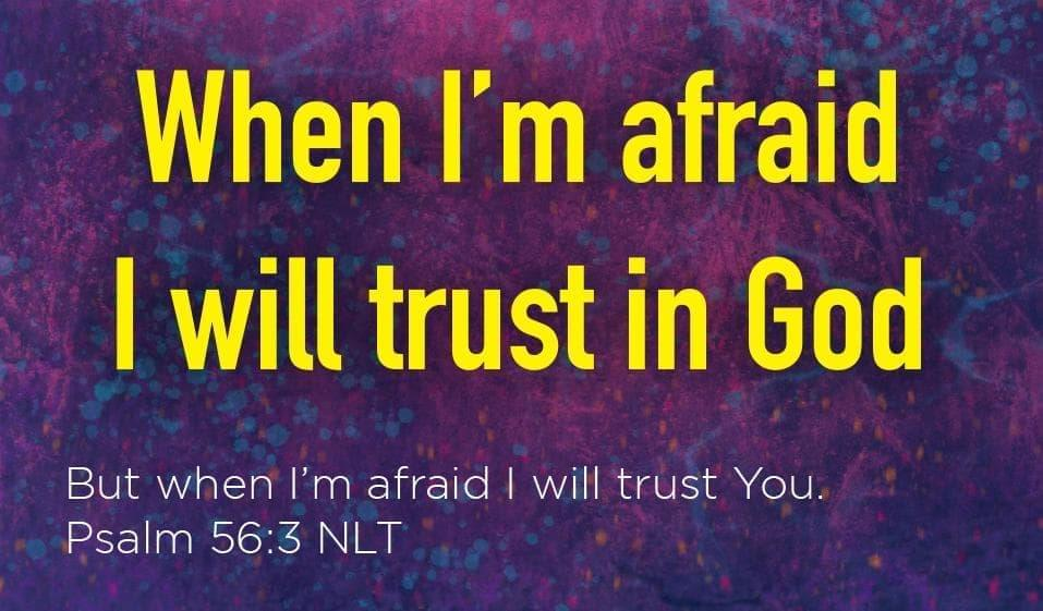 Children's Pass Along Scripture Cards - When I'm Afraid I Trust in God, Pack of 25 - Logos Trading Post, Christian Gift