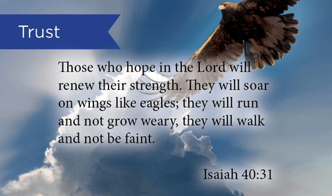 Pass Along Scripture Cards, Trust, Isaiah 40:31, Pack 25 - Logos Trading Post, Christian Gift