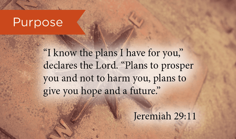 Pass Along Scripture Cards, Purpose, Jeremiah 29:11, Pack 25 - Logos Trading Post, Christian Gift