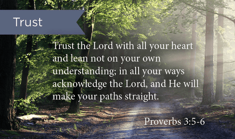 Trust In The Lord, Prov 3:5-6, Pass Along Scripture Cards, Pack 25