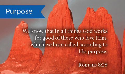 Purpose, Romans 8:28, Pass Along Scripture Cards, Pack 25