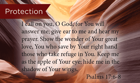 Protection, Psalms 17:68, Pass Along Scripture Cards, Pack 25