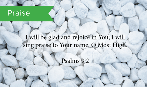 Pass Along Scripture Cards, Praise, Psalms 9:2, Pack 25 - Logos Trading Post, Christian Gift