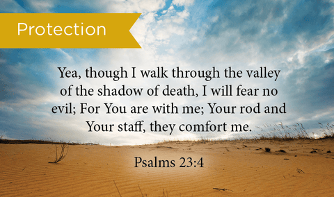 Pass Along Scripture Cards, Protection, Psalms 23:4, Pack 25 - Logos Trading Post, Christian Gift