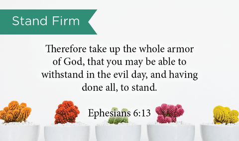 Pass Along Scripture Cards, Stand Firm, Eph, 6:13, Pack 25 - Logos Trading Post, Christian Gift