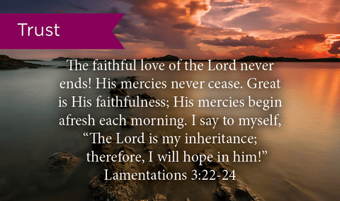 Pass Along Scripture Cards, Trust, Lamentations 3:22-24, Pack 25 - Logos Trading Post, Christian Gift