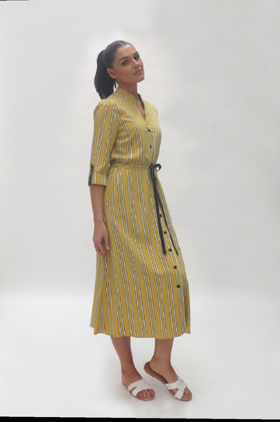 fee G Stripe dress