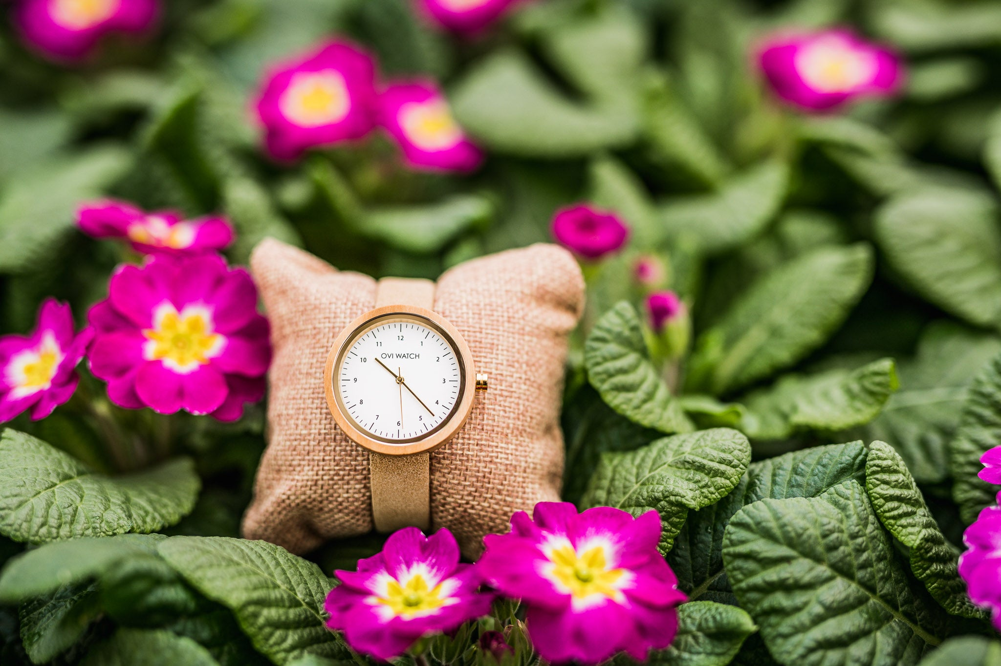 5 Reasons Why To Choose Vegan Watches