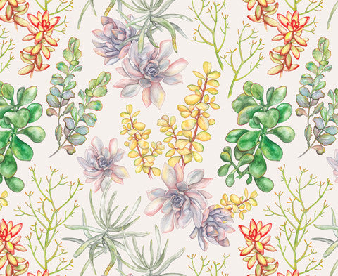Succulent </br> Multicolour on Parchment (Digital)