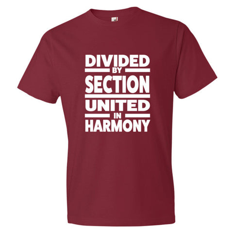 Image of Divided by Sections, Unitedin Harmony  Men's t-shirt