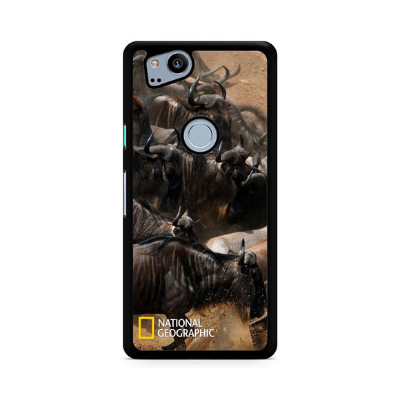 National Geographic Migration, Custom Phone Case, Google Pixel 2 Case, Pixel 2 Case