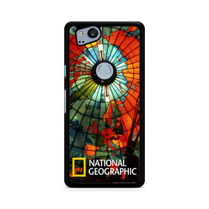 National Geographic Picture, Custom Phone Case, Google Pixel 2 Case, Pixel 2 Case