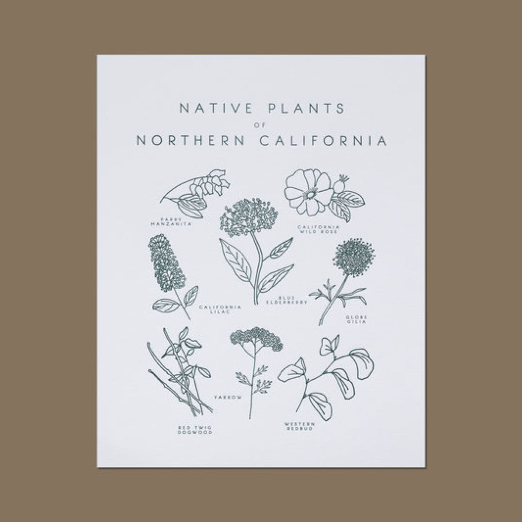 Native Plants of Northern California Letterpress Print