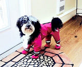 Rain Suits - Pawsazz - Pawsazz - 6