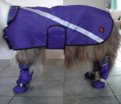"""Snappy"" Raincoat Lined - Pawsazz - Pawsazz - 1"